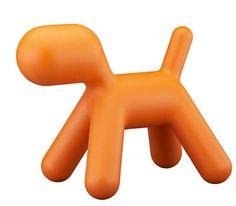 Earo Arrnio puppy