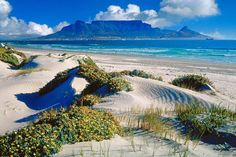 After a few days of wake-up calls and late-night fireside drinks, a little rest is called for — ideally on a beach. Here we pick the best holidays that combine wildlife with a waterside stay. South Africa Art, Safari Holidays, Trippy Wallpaper, Kwazulu Natal, Table Mountain, Cape Town, Us Travel, Sunrise, Places