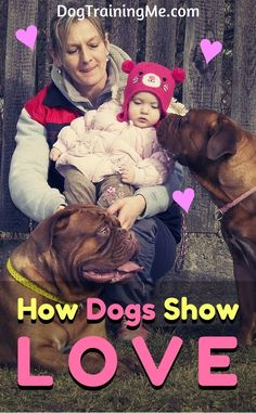 How dogs show love. Is your dog saying I'm hungry or I love you??? Remove the doubt! Learn the 6 ways dogs show love and never wonder again! Read about all 6 in this article!