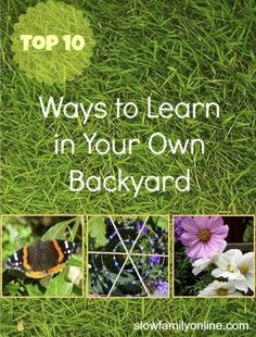 10 ways to learn in your own backyard.