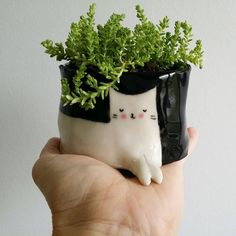 Handpainted white cat on a black pot, perfect for succulents