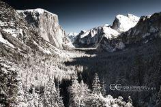 Yosemite Wedding Photographer - Infrared Landscape photography
