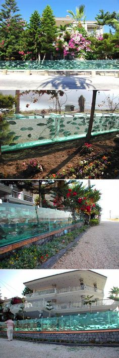 Mehmet Ali Gökçeoğlu, a successful businessman and topographical engineer from Turkey, has built the world's most amazing fence for his luxurious villa in Çeşme, Izmir. Eight years ago he replaced the metal fence at the front of his property with a 50-meter-long aquarium filled with hundreds of fish and octopuses. I know, you have to see it to believe it.