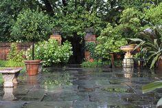 Dumbarton Oaks:  The Orangery Terrace after rain