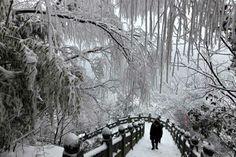 China's white winter: Wudang Mountains in Shiyan, Central China's Hubei province, Feb 9, 2014. [Photo/Xinhua]