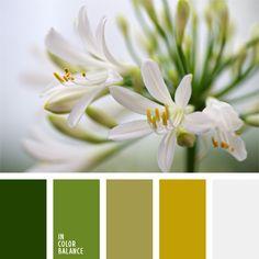 blanco, color verde hierba, color verde mostaza, combinación de colores para decorar interiores, combinaciones de colores, elección del color, paleta de colores monocromática, paleta del color verde monocromática, selección de colores para el diseño de interiores, verde.