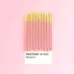 Find images and videos about pink, pantone and aesthetic on We Heart It - the app to get lost in what you love. Photo Trop Belle, Look Wallpaper, Diy Inspiration, Everything Pink, Mbti, Pantone Color, Pastel Pink, Pastel Roses, Pink Roses