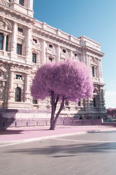 Hungarian photographer Milán Rácmolnár captured the beauty of Rome in an unconventional way in this series titled Rome in Infrared.