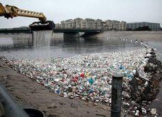 Ask Environmental Protection Agency to Label Hazardous Plastics