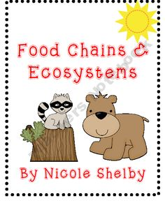 Food Chains, Food Webs, and Ecosystems Science Activities Fourth Grade Science, Primary Science, Science Classroom, Teaching Science, Science For Kids, Science Activities, Science Ideas, Ks2 Science, Elementary Science