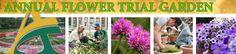 Annual Flower Trial Garden at CSU, Ft. Collins