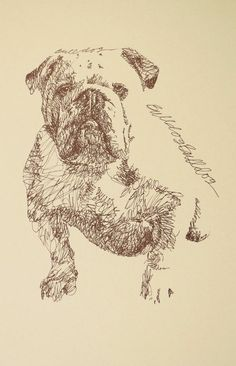 Dog art drawn entirely from the words English Bulldog. See all the 110 breeds at: drawDOGS.com Artist Kline can add your dogs name into the art.