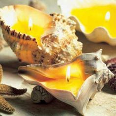 Seashells make awesome candles. Here are some ideas and links to tutorials as well as shell candles to buy, made from hand collected shells. Seashell Candles, Seashell Crafts, Beach Crafts, Fun Crafts, Diy And Crafts, Diy Candles, Homemade Candles, Nature Crafts, Summer Diy