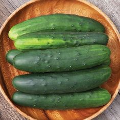 Organic Non-GMO Marketmore 76 Cucumber - OPEN-POLLINATED - Garden Vegetable Seed for Planting (price includes shipping)