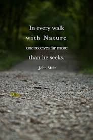 Image Result For Exploring Quotes Exploring Pinterest Nature