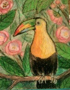 Tropical Bird, oil pastel on sandpaper, Sej Rainforest Birds, Sandpaper, Tropical Birds, Original Art, Pastel, Drawings, Painting, Oil, Cake