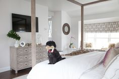 Dresser with Nailhead Trim - Transitional - Bedroom - Sherwin Williams Incredible White - Erin Gates Design Pretty Bedroom, Cozy Bedroom, Home Decor Bedroom, Bedroom Furniture, Bedroom Ideas, White Wall Paint, White Walls, Master Suite Addition, Erin Gates