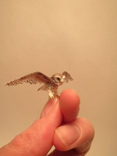 Reserved for Dan - Dollhouse miniature Little Owl in 1:12 scale - OOAK - Made by Fanni Sandor IGMA Fellow