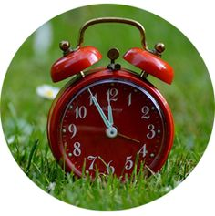 """Don't forget to """"spring"""" forward! Daylight Savings Time begins on Sunday This is a friendly reminder to set your clocks ahead 1 hr. Haiku, Saving Tips, Saving Money, Time Saving, Money Savers, Saving Ideas, Was Ist Reiki, Baby Schedule, Time Heals"""