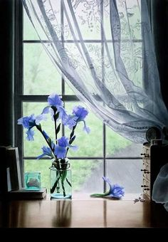 National Flower of France #MissKL #SpringtimeinParis #Iris