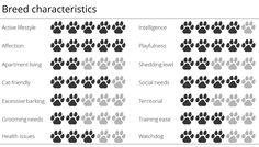 Nova Scotia Duck Tolling Retriever breed characteristics