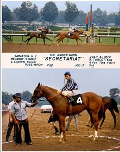 #Secretariat...ridden by #Ron_Turcotte