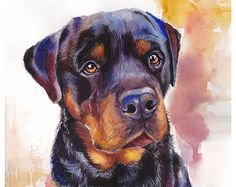Rottweiler Watercolor Giclee Fine Art Print by AquilaWatercolor
