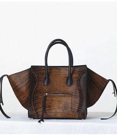 Celine Fall 2013 Bag