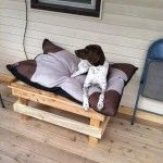 DIY: How to Build a Pallet Dog Bed