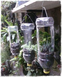 Ways to Reuse Plastic Bottles to Cute Planters Ideas Bottle garden, Diy garden, Plastic bottle p Plastic Bottle Planter, Reuse Plastic Bottles, Plastic Bottle Crafts, Plastic Plastic, Garden Ideas With Plastic Bottles, Water Bottle Crafts, House Plants Decor, Plant Decor, Garden Crafts