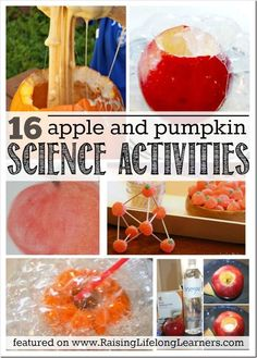 16 Apple and Pumpkin