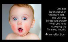 Quotes about karma | Nannette Bosh | Nannette Bosh Inc | Nannette Bosh Quotes