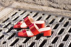 SCAMP Red Patent
