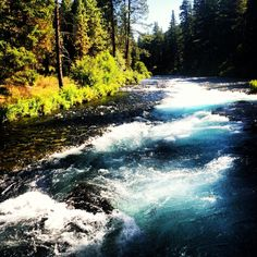 Metolius River, Central Oregon