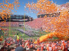 Death Valley - Clemson Tigers!  My Daughter's Alma Mater!