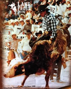 Cowboy Up, Cowboy And Cowgirl, July In Cheyenne, Rodeo Birthday Parties, Lane Frost, Pro Rodeo, Cowboy Games, Bucking Bulls, Rodeo Cowboys