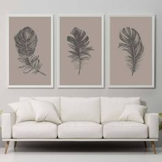 Set of 3 Feather Print Feathers Brown Feather Wall Art Print Home Decor Print Feather Poster Feather Prints Feather Illustration Tropical Botanical Wall Art, Botanical Prints, Floral Prints, Feather Wall Art, Feather Print, Nursery Prints, Wall Art Prints, Feather Illustration, Wall Spaces