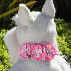 "Alexandra 1/2"" Collar on Perfect Pink Only (3 Flowers on all Sizes)"