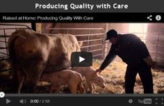 Producing quality beef begins at the grassroots by caring for cattle, shares Donna Jackson who ranches with her husband Carman near Inglis, Man. Wild West, How To Know, Cattle, Raising, Jackson, Environment, Stress, Plate, Husband