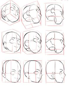 Drawing Heads, Drawing Base, Figure Drawing, Human Anatomy Drawing, Anatomy Art, Body Reference Drawing, Art Reference Poses, Manga Drawing Tutorials, Art Tutorials