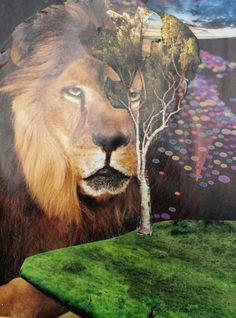 Strength of the Lion...7th Chakra...I am one who stays grounded while seeking the light and my multipotentiality.  My companion the lion, tells me I am strong and I can overcome any obstacle if I remember God is the source of my strength.