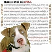 Pitbulls need our help, shelters are full, thousands die every day.
