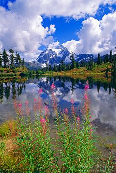Mount,Shuksan,from. Picture. Lake. North Cascade,Mountains,Washinton,  USA.
