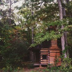 Cabin in the woods. One day!