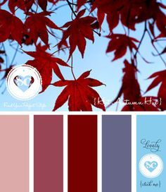 113 Hot Autumn Hue by Asmalina © 2012 Sorbetcolour ™