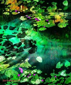 'Lily Pond' by mimulux on artflakes.com as poster or art print $17.33