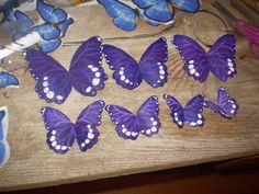 Beautiful Butterflies made from plastic water/coke bottles