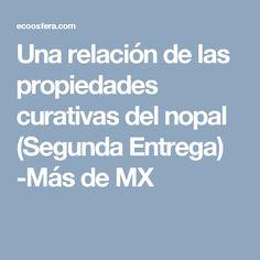Una relación de las propiedades curativas del nopal (Segunda Entrega) -Más de MX