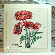 I have many poppy stamps so am loving this month's CAS Watercolour Challenge ! Here is my reminder card: I've had this sta. Watercolour Challenge, Easy Watercolor, Watercolor Pencils, Watercolor Cards, Watercolour Tutorials, Inka Gold, Pearl Ex, Tiny Bird, Christmas Rose