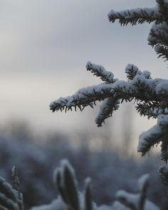 """60 likerklikk, 8 kommentarer – i n g e r staveland (@iminfirkant) på Instagram: """"kjære værmeldere, ta gjerne feil når dere varsler om regn og røde grader i morgen. // last day of…"""""""